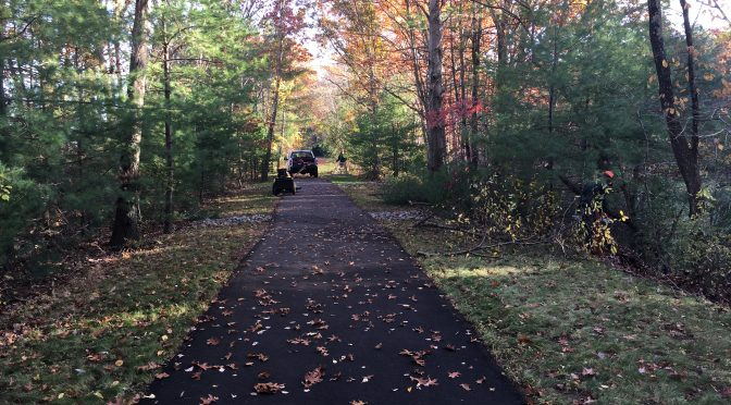 Fall Clean Up – Thank You!